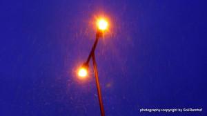 Assistantly_LightDecember_Berlin_photographySoliRemhof